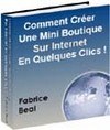 Ebook gratuit Comment creer une mini boutique sur internet